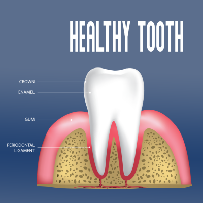 healthy-tooth.png